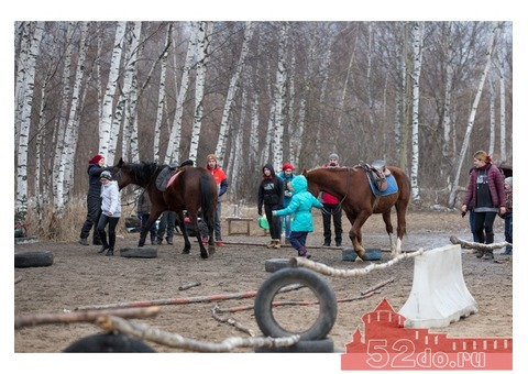 Квест в конном клубе